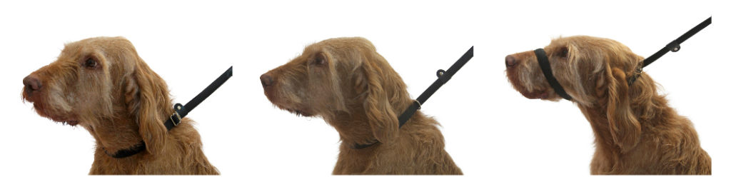 Uniwalker Figure of 8 training dog lead